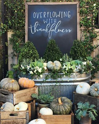 Feelings of gratitude abound. Magnolia Market's beautiful Fall pumpkin display in Waco, Texas.