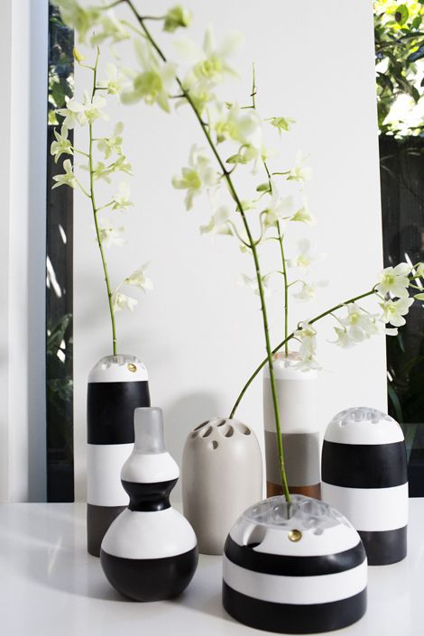 Dinosaur Designs Seed Pod 2014 - Lotus Seed vases, Sprout vases. Designed by Louise Olsen. Photographed by Tim Georgeson.