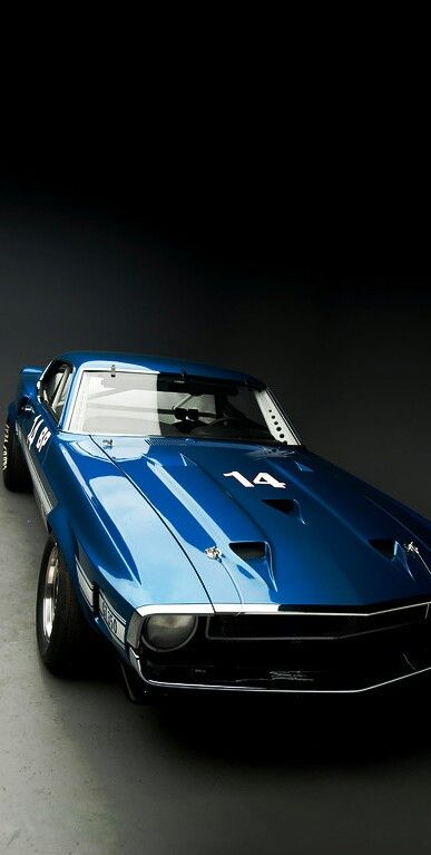 (°!°) Shelby Cobra Mustang