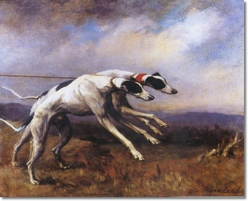 Maud Earl - Greyhounds - In The Slips 1900