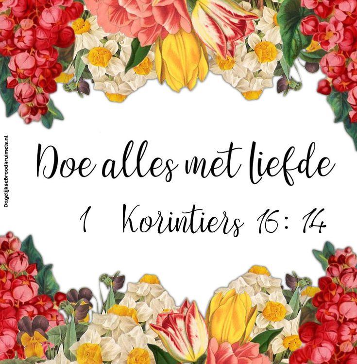 Doe alles met liefde. 1 Korinthe 16:14 #Liefde https://www.dagelijksebroodkruimels.nl/1-korinthe-16-14/