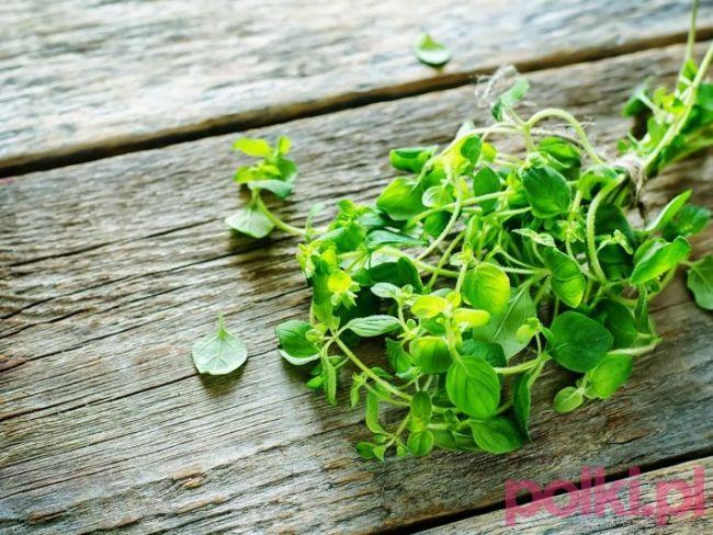 Olejek oregano to znany od lat sposób na naturalne wspomaganie zdrowia. Poznaj cudowne właściwości olejku z oregano i dowiedz się, jak go stosować