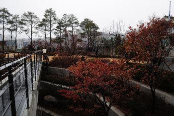 * 단풍이 붉게 물든 서울파트너스하우스의 가을