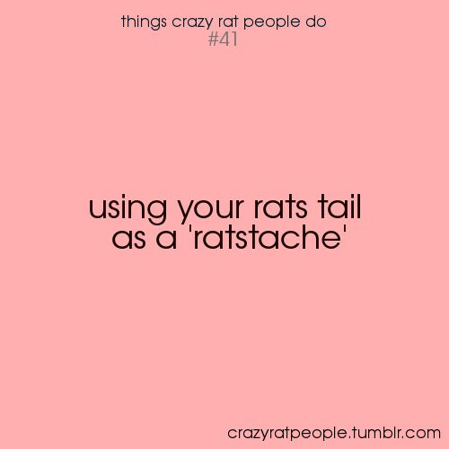 crazy rat people