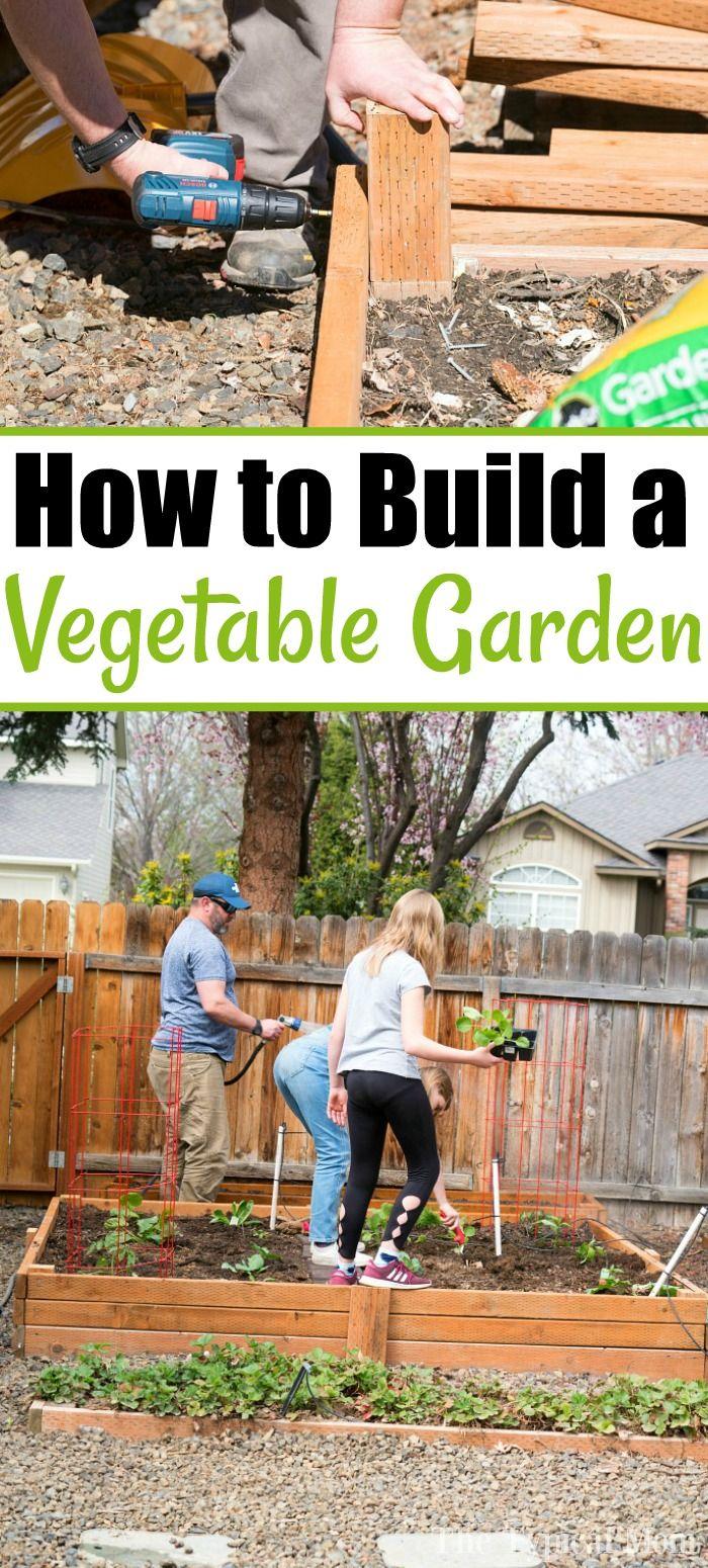 How To Make A Vegetable Garden Backyard Growing Vegetable Garden Planning Low Maintenance Garden Design Backyard garden grow your own
