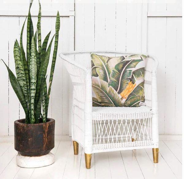 Malawi Cane Chair Coastal Decorating Living Room Modern Coastal