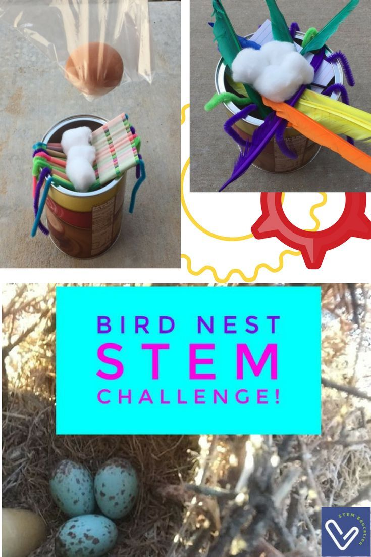 Students will dive into the engineering design process with this hands-on STEM challenge building a nest to safely catch a falling egg. A follow-up activity teaches biomimicry by relating what was learned in building a bird nest and applying it to designing a landing pad for a space capsule. As a student-driven assignment, the purpose of the teacher is to act as a facilitator. You will provide the structure to the project, but students will take an active role in designing and building their…