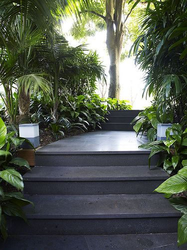 Garden path with stairs