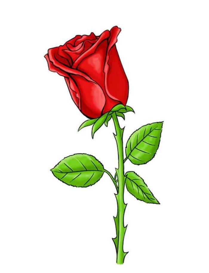 Алкоголики, картинка цветов розы для детей