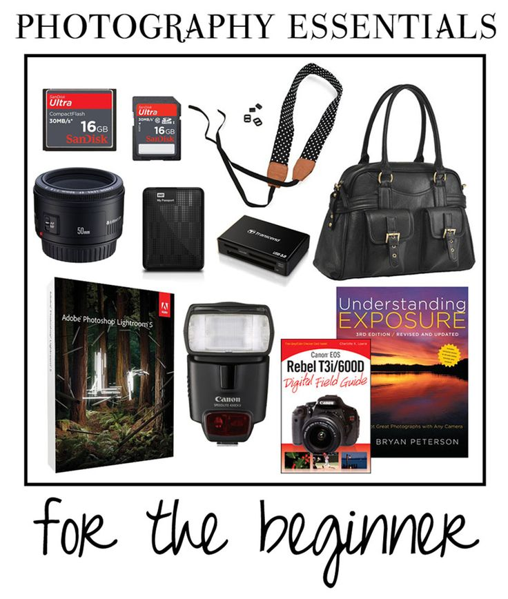 photography essentials for the beginner
