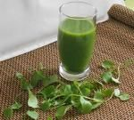 Groene smoothie met winter-postelein - bladgroenten in herfst en winter