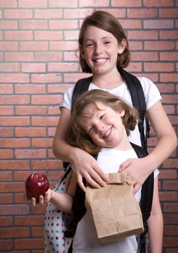 5 Healthy brown bag lunches kids will love