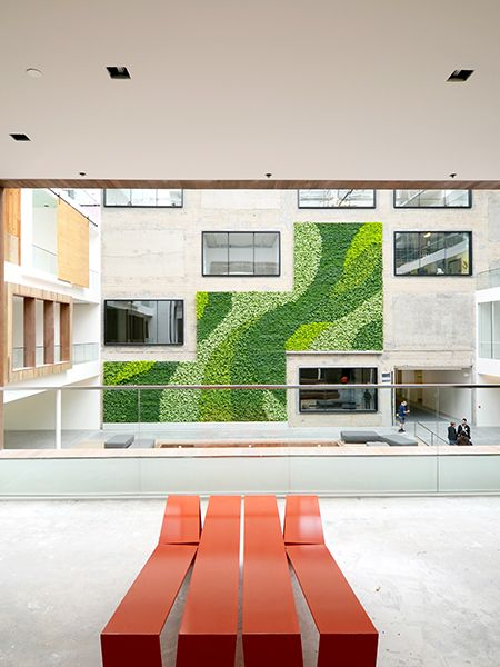 Gsky Living Green Walls: 17 Best Images About Green Walls And Rooftop Gardens On