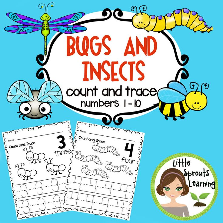 18 best Theme Unit: Bugs and Insects images on Pinterest | Bugs ...