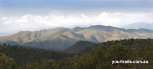 Mulligan Highway  Scenery, Tropical North Queensland - Join us on a 5 days 4 nights expedition Come celebrate the world's oldest living culture. Laura Dance Festival