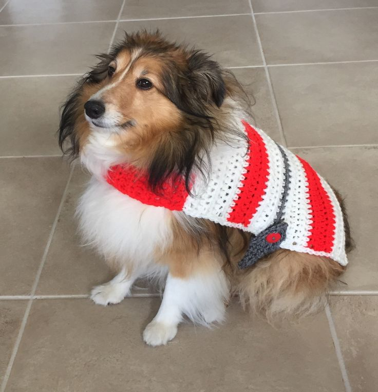 Crochet Dog Sweater, Red White & Gray Dog Sweater, Ohio State Dog Sweater, Striped Dog Sweater, Crochet Dog Coat, OSU Dog Sweater, Dog Coat by TheHookster on Etsy