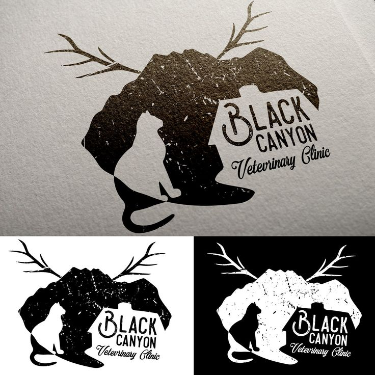 Black Canyon Logo | 99designs