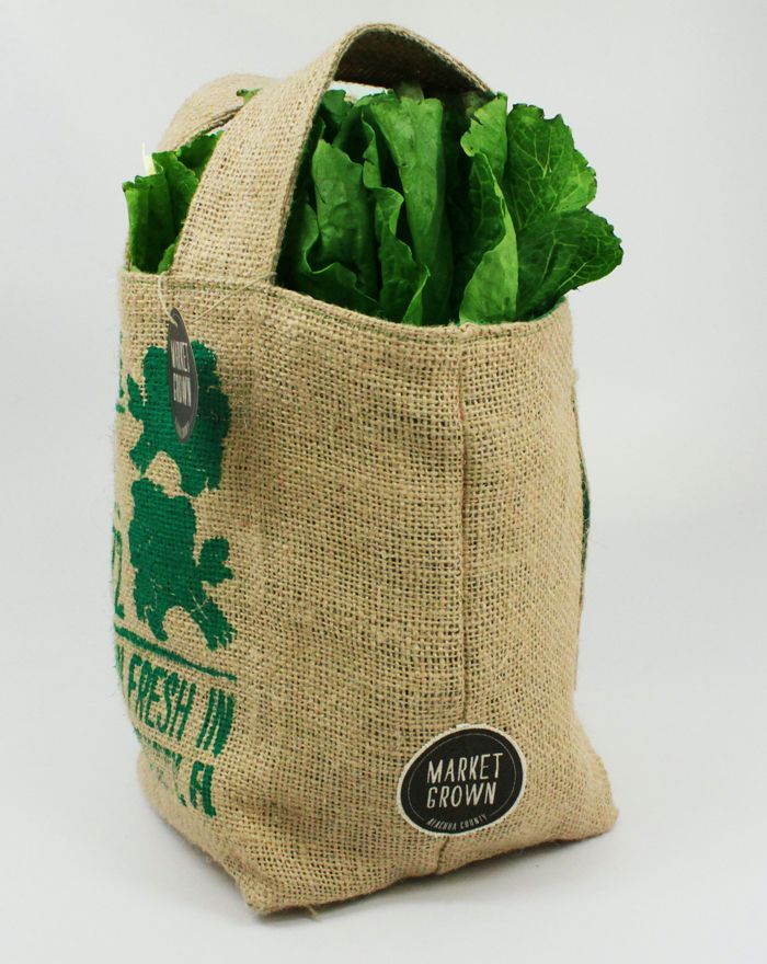 """""""Market Grown is a campaign to support local farmers in Alachua County, FL. In order to help the farmers, we made burlap bags to be sold at the Farmers Market to create revenue. The bags feature screen printed designs of vegetables and fruits which are sold by the farmers. The bags are made out of burlap as a way to up-cycle existing materials found at the market. The inside of the bags are lined with colorful nylon fabric so they are water-proof for fresh produce. """""""