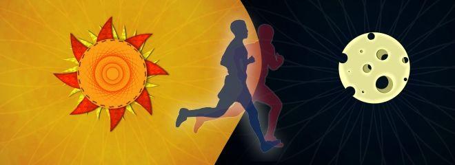 Cand este mai bine sa faci cardio, dimineata sau seara? Afla acum!