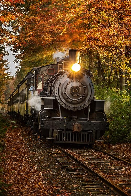 "Essex Steam Train's ""Engine 40"" passing through the autumn foliage at Canfield Woods in Deep River, CT."