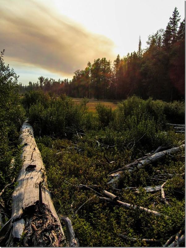 Dead Log. South Prairie Lake. Big Lava Bed. Gifford ...