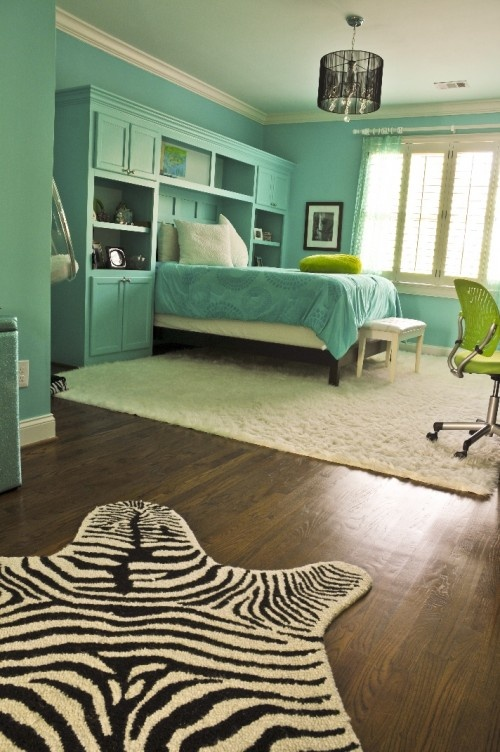 pretty color - turquoise (w/zebra print)