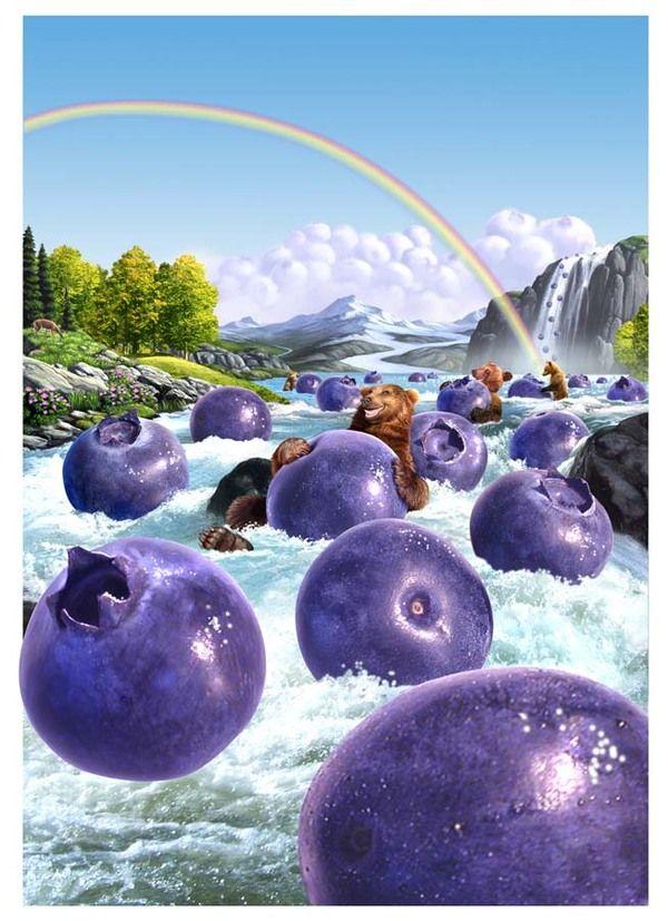 Blueberryland.  Jerry LoFaro