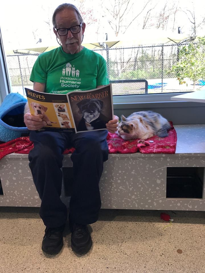 George A Volunteer For The Jacksonville Humane Society Reads To Star One Of The Shelter Cats It S True You Know Ca Humane Society Cats Dogs