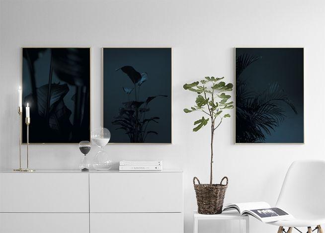Black plant, poster in de groep Posters bij Desenio AB (8619)