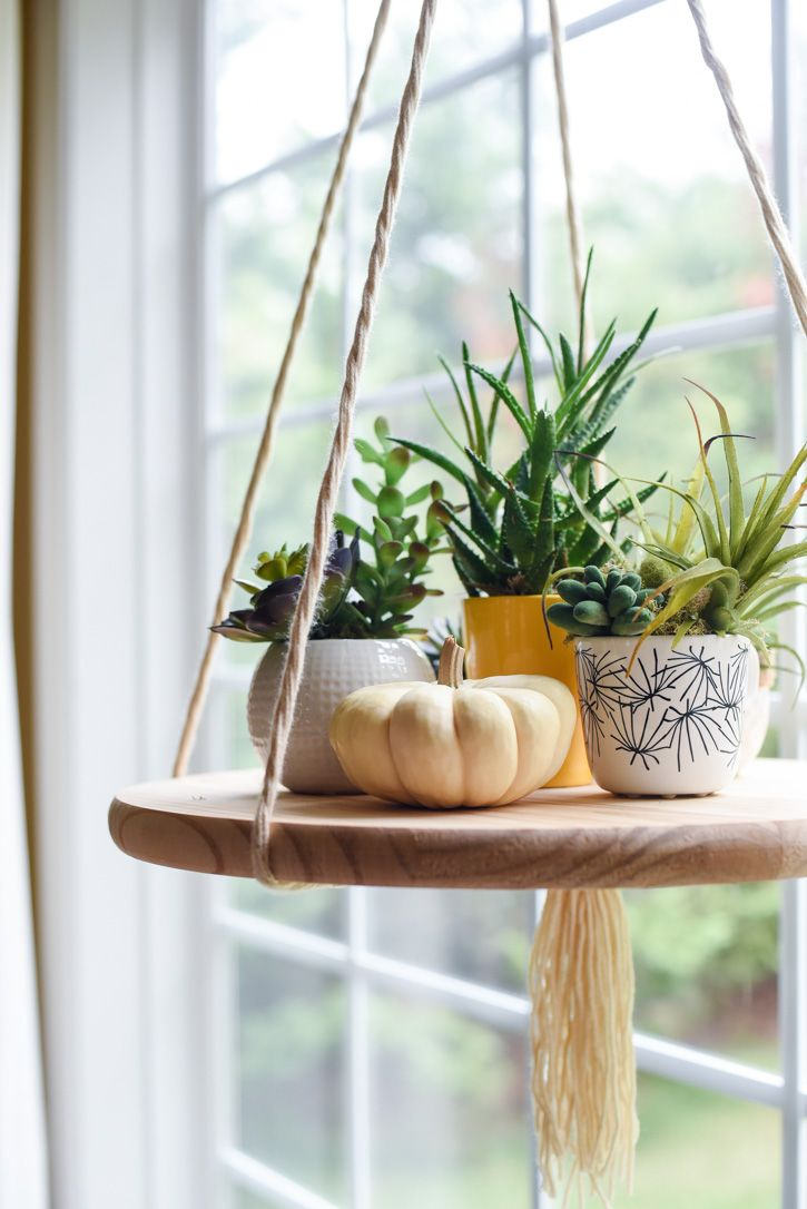 A Colorful, Layered Home Focused on Fun and Family | Design*Sponge - i'm seeing these hanging shelf planters everywhere. must be easy to DIY...