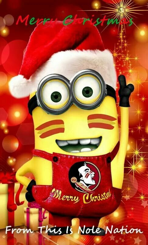 Merry Christmas from a Noles fan!