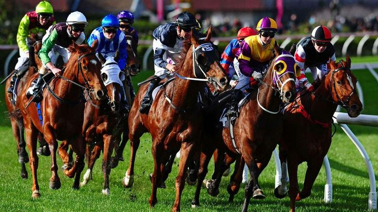 Virtual horse racing is an exciting #HorseRacing game by Monaco Stallions #Casino, here you can play online with virtual #Horses, sound, and effects. Join now and #Bet on your favorite horses.  #HorseBetting #Gambling
