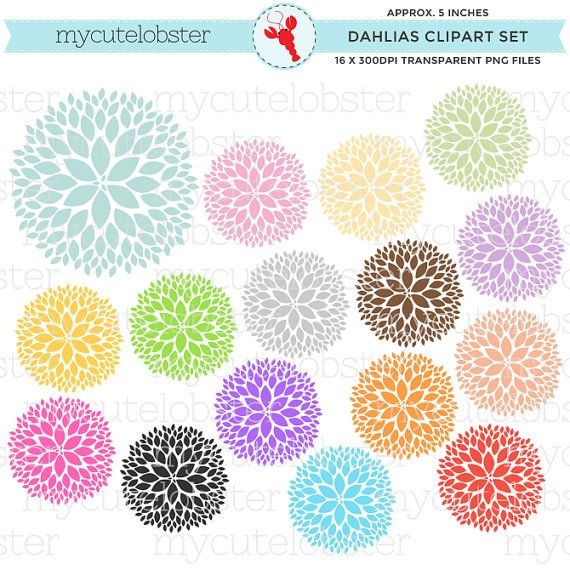 Dahlia Flowers Clipart Set - clip art set of flowers, dahlias - personal use, small commercial use, instant download