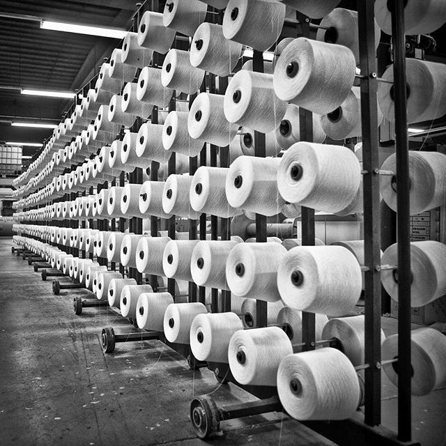 A glimpse of the linen production. Rows of linen yarn at our linen manufacturer Libeco in Belgium.