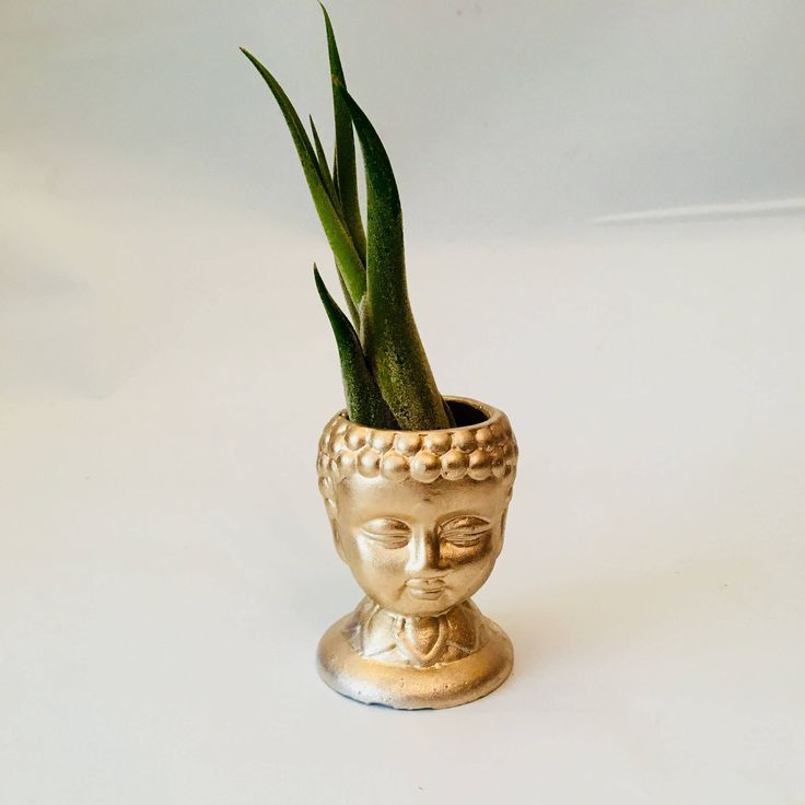 Excited to share the latest addition to my #etsy shop: Handmade Concrete metallic gold Buddha planter for airplants|buddha statue|buddha gifts|air plant holder|air plant gifts|air plant gift