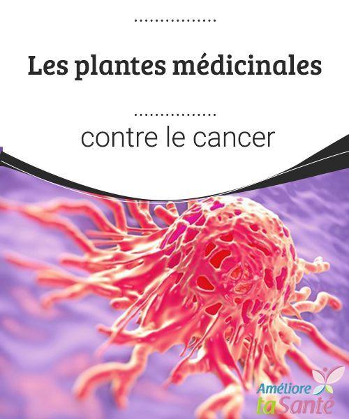 Les plantes médicinales contre le cancer La nature peut nous soigner. Venez découvrir les plantes médicinales utilisées pour lutter contre le cancer.