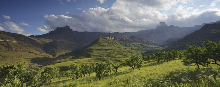Panoramic view of the Amphitheatre range in the Drakensberg mountains