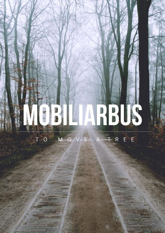 Mobiliarbus is the incantation to a charm used to levitate and move plants and trees, as well as materials made out of wood. It may a variation of the same basic spell Mobilicorpus is, linked to it by a base Latin word.