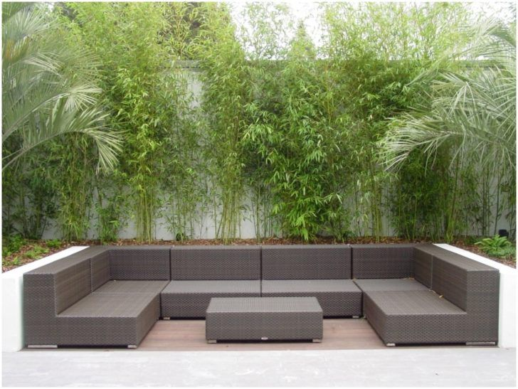 Enchanting Sleek Outdoor Patio In Backyard With Bamboo Garden 50 Furniture