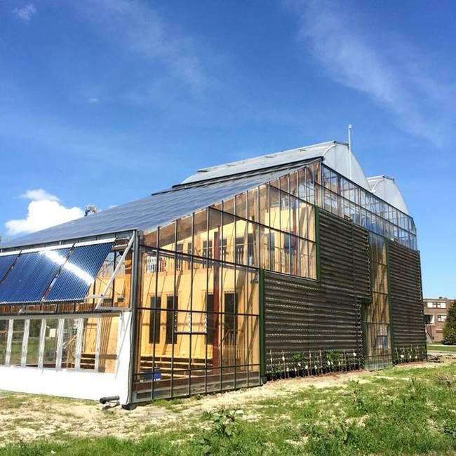 In the port city of Rotterdam, this Dutch family is taking part in a three-year test pilot project that has them living full-time in a greenhouse home, created by design students at the Rotterdam University.