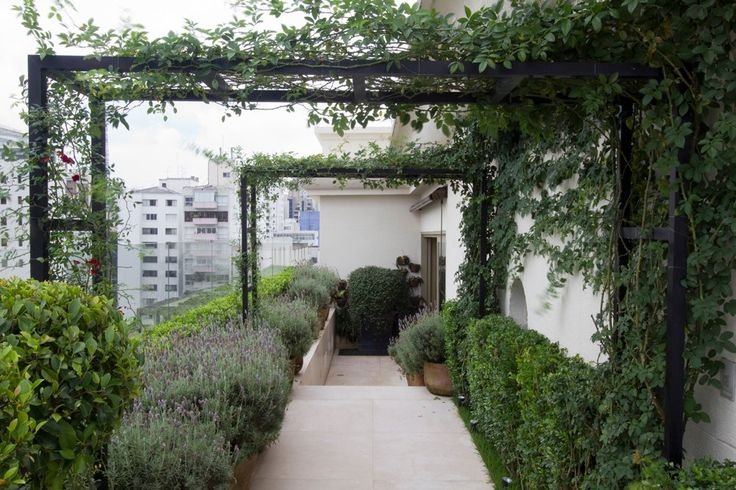 Roof terrace with pergola and raised bed