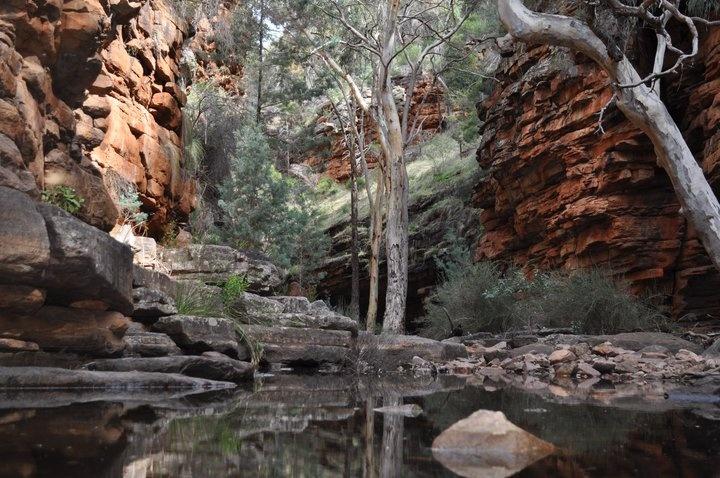 Flinders Ranges. South Australia