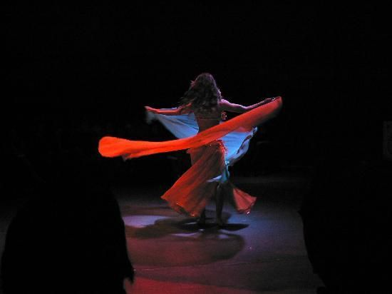 Turkish Dance Night at Hodjapasha