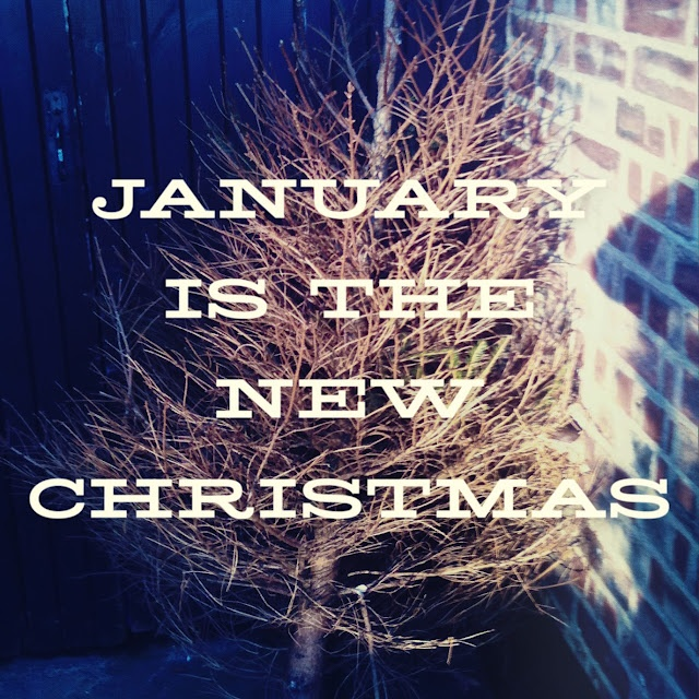 70 best January❣ images on Pinterest | Hello january, Birth month ...