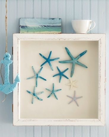 Frame starfish dyed different shades of blue