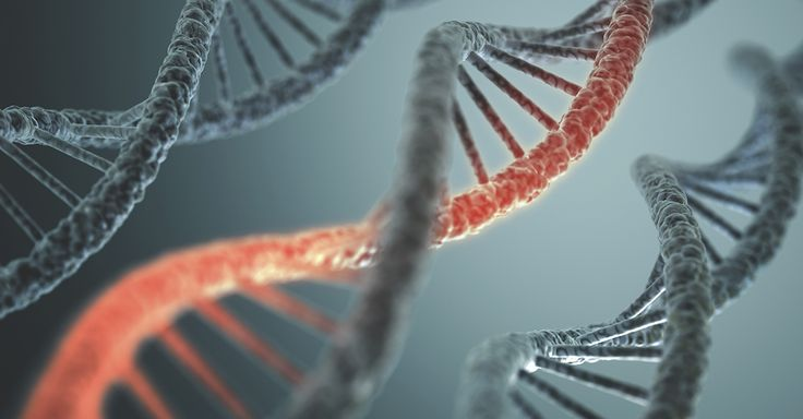 Genetic mutations: knowing your cancer risk | Houston Methodist Healthy Knowledge