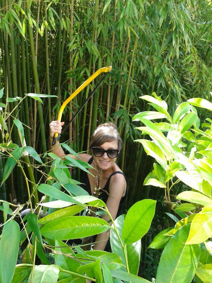Roxane dans les bambous