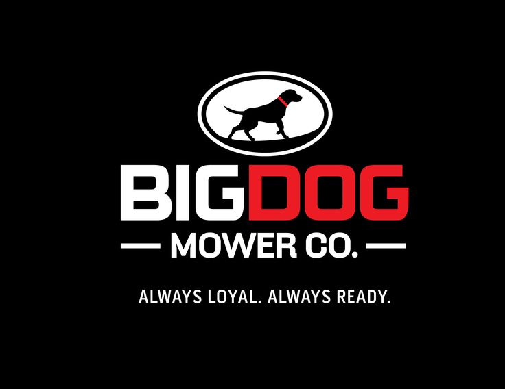 """Our new tagline, """"ALWAYS LOYAL. ALWAYS READY."""" What else can you expect from your BigDog?"""