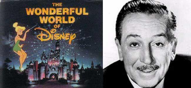 Every Sunday night, The Wonderful World of Disney was on.