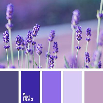 Best 20 purple color combinations ideas on pinterest - Blue and purple color scheme ...